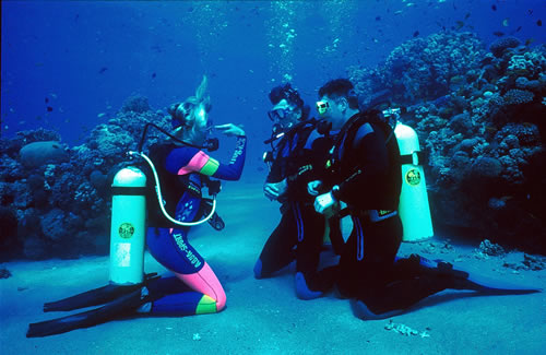 Mexico blue dream padi open water diver playa del carmen - Dive shop mexico ...