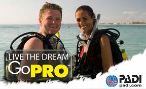 Open Water Scuba Instructor (OWSI)