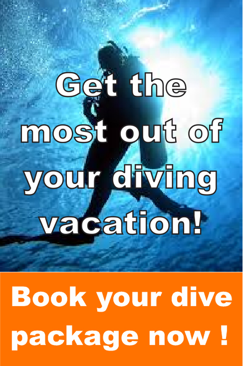 Book yout dive package now